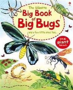 Usborne Books & More. Big Book of Big Bugs via NYC Kids Bookshop