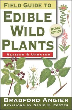 Foraging for Wild Edibles