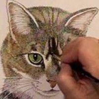 Drawing a cat -- starting with the eyes. pen, cat