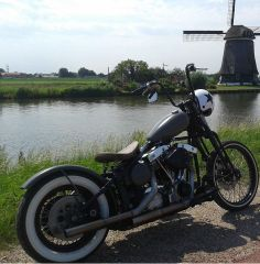 Dutch American