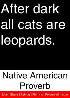 After dark all cats are leopards. - Native American Proverb #proverbs #quotes