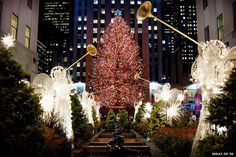 New York City. My favorite place to be at Christmas time.