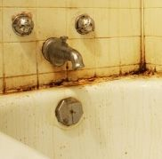 Tile and Grout Cleaning and Repair