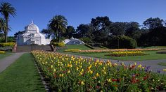 Check out Golden Gate Park