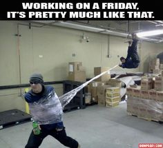 work, funni stuff, warehouses, spiders, real life