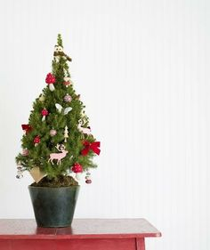 Tips for decorating a Christmas tree when you have pets.