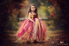 Autumn, Dress, Fall Photography, Lisa Karr Photography, Beloit Wisconsin, Beautiful, Toddler Girl