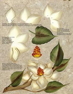 One Stroke Magnolia Teaching Guide Packet by Folk Art