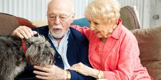 Making provisions for your pets as part of your retirement planning