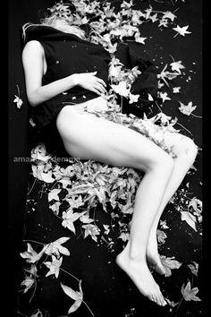 Amanda Demme | Book 2