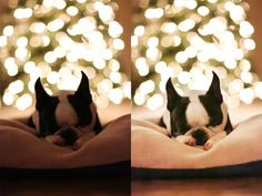 How to Brighten a Dark Subject on a Light Background kevinandamanda.com