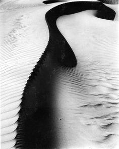 photograph print, oceano photograph, desert, dune, black white