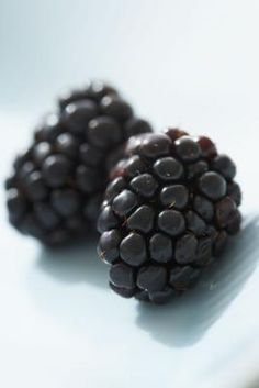 How to Cut Back or Kill Overgrown Blackberry Bushes