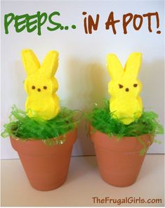 Peeps in a Pot!  {fun for your Easter brunch table or dinner buffet!} ~ from TheFrugalGirls.com #easter #peeps
