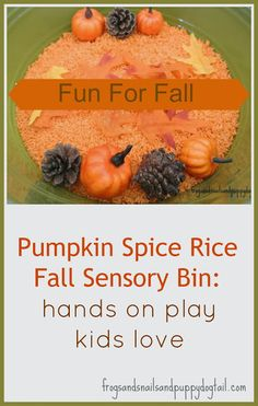 Frogs and Snails and Puppy Dog Tail (FSPDT): Pumpkin Spice Rice Fall Sensory Bin- fun hands on play