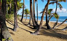A beach in San Juan, Puerto Rico. (From: 30 Beautiful Photos of the Caribbean)