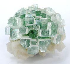 Apophyllite-(KF) from India
