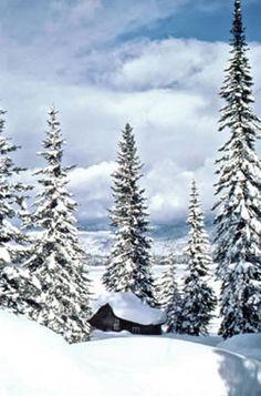 McCall in Winter