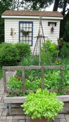 20+ Ideas for your home veggie garden - deep raised beds with trellis