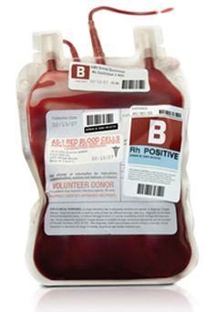 Biology Corner Blood resources