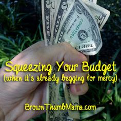 Brown Thumb Mama: Squeezing your budget (when it's already begging for mercy)