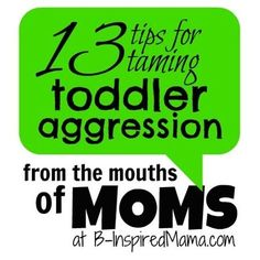 Is your toddler going through a biting, hitting, or pinching phase? How do you deal with it? Here are 13 tips for taming toddler aggression from moms like you! At B-InspiredMama.com