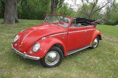 vw bugs   1959-vw-bug-convertible