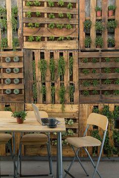 Voici un mur végétalisé très sympa avec ce patchwork de palettes.Le mariage du bois et de la...