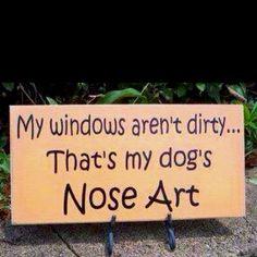 Car windows, sliding doors, etc.. Oh Titus!