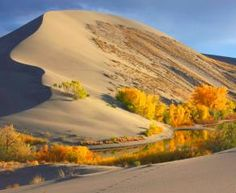 Bruneau Dunes State Park, 27608 Sand Dunes Rd, Mountain Home, ID, USA