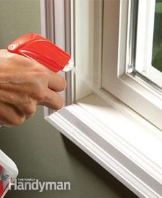 How to Get Rid of Ants - Article   The Family Handyman