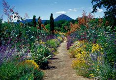 Join SBBG for a garden tour and special lecture by Kate Frey on habitat gardens on October 6, 2013! Opening weekend of the 2013 SBBG Fall Plant Sale (October 5 to November 3, 2013)