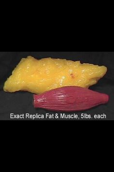 Fat vs. Muscle.