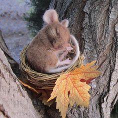 mice, robin joy, craft, autumn, robins, felt mous, needl felt, sweet dreams, felt art