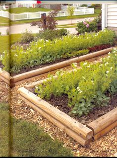 These are just like my raised beds. Maybe we can put red lava rock around them to make it a bit matchier to the rest of the landscaping.