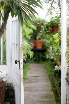 green garden, potting sheds, garden doors, garden pot, greenhous