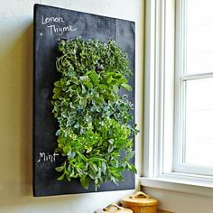 Chalkboard Wall Planter | Love this for Herbs