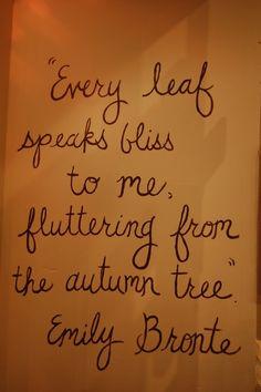 every leaf...