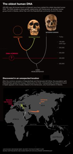 The oldest human DNA.
