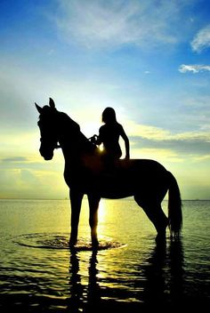 Always luved riding horses in the twilight by the water!