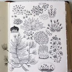keep drawing, use a book to colllect scribbles, notes and sketches to be used to reference works.    Becca Stadtlander sketchbook