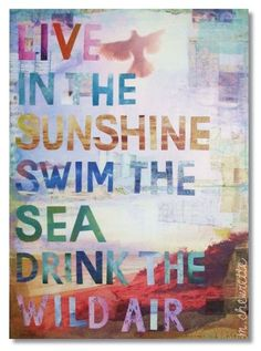 quotes sunshine, lake quotes, quotes beach, wild air, drink