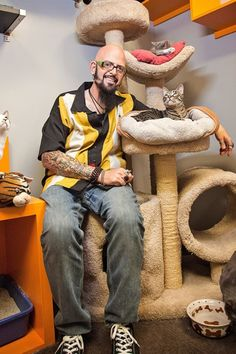 Cat Whisperer Jackson Galaxy's Advice for Keeping Your Cats Off The Counter | The Kitchn