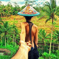 The rice fields in Bali.