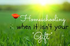 Homeschooling When it Isn't Your Gift