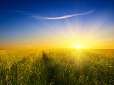 Sunny Skies Tied to Suicide Rates