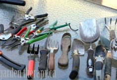 Cleaning & Organizing Small Garden Hand Tools