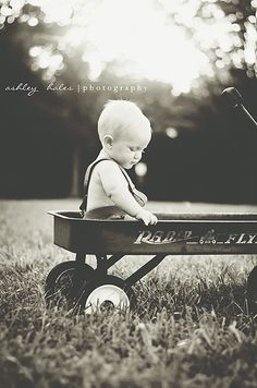 9 month old photography except on a sled since it'll be january