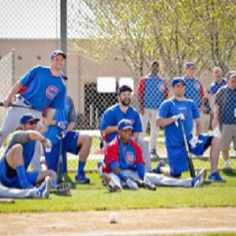 Cubs' spring training '12