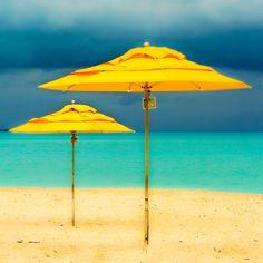 Coco Beach Abaco Bahamas